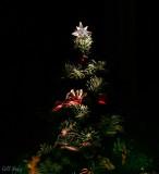 'Tis Christmas