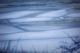 Ice patterns3