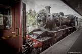 Dampflok der Strathspey Railway