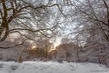 Winterwonderland im Halloh