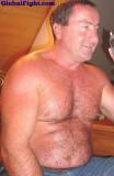 fat chubby chaser hairy bear.jpg
