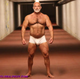 graybeards gay photos.jpg