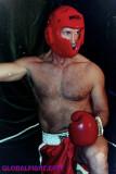 boxer daddy fighting.JPG