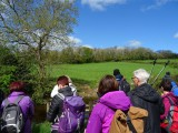 Gower Society/Ramblers walks