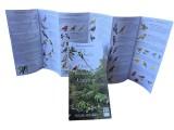 Broschure about Botnical Garden, Quito