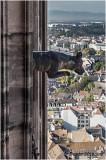 La grande gargouille de la haute tour.