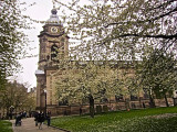 Blossom, St Philip's Cathedral