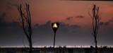 sunrise at marina beach Chennai, India_DSF9077.jpg