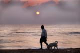 dog walk_DSF9091.jpg