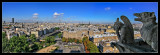 Paris desde Notre-Dame