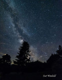 Milkyway emerges from Pine tree
