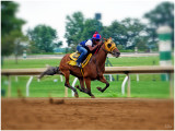 All 4 Off the Dirt -Keeneland AM Workouts