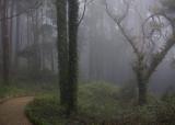 Park of Pena