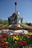 Tonami Tulip Park DSC_5806