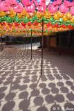 Lanterns DSC_5360