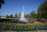 Fountain DSC_5852
