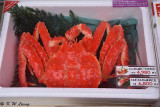 Crab @ Hakodate morning market DSC_6561