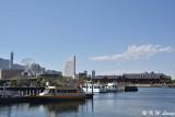 Harbour DSC_5143
