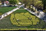 Tonami Tulip Park DSC_5813