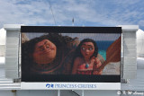 Movies Under the Stars screen DSC_7469