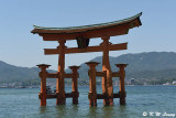 Floating Torii Gate of Itsukushima Shrine DSC_7807