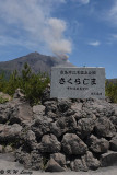 Arimura Lava Lookout DSC_7662