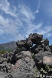 Arimura Lava Lookout DSC_7648