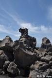 Arimura Lava Lookout DSC_7636
