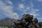 Arimura Lava Lookout DSC_7658