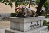 God ox statue in front of Dazaifu Tenmangu DSC_8829