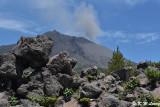 Arimura Lava Lookout DSC_7655