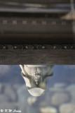 Reflection of Guan Yin statue DSC_5076