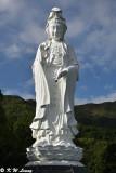 Guan Yin statue DSC_5082