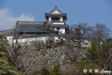 Kochi Castle DSC_6290