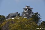 Kochi Castle DSC_6293