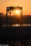 Sunset DSC_3476