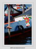Boats 117 (Aveiro)