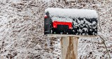 Springtime Canadian Mailbox DSCN03818