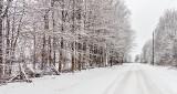 Springtime Canadian Back Road DSCN03830