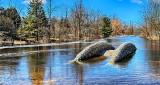 Water On The Bridge DSCN04918-20