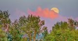 Thunder Moon Rising P1210902-4