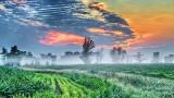 Clouded Sunrise P1220273-5