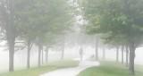 Foggy Morning Dog Walker DSCN13454