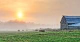 Bales & Barn In Sunrise Fog DSCN13681