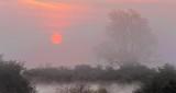 Red Sun Rising P1230391-7