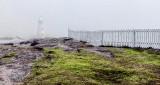 Cape Spear Light In Fog DSCN4892