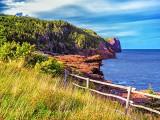 Newfoundland Coast DSCN14766