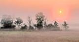Sunrise Over Ground Fog P1250311-7
