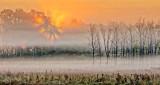 Sunrise Sunrays Through Ground Fog DSCN15090-2