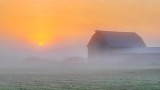 Barn In Sunrise Fog P1250885-7